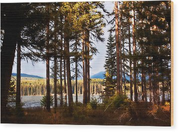 Campsite Dreams Wood Print by Janie Johnson