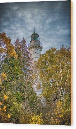 Cana Island Lighthouse II By Paul Freidlund Wood Print