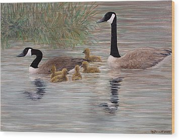 Canada Goose Family Wood Print by Kathleen McDermott