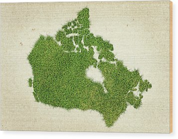Canada Grass Map Wood Print by Aged Pixel