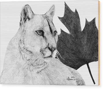 Canadian Cougar Wood Print by Kayleigh Semeniuk