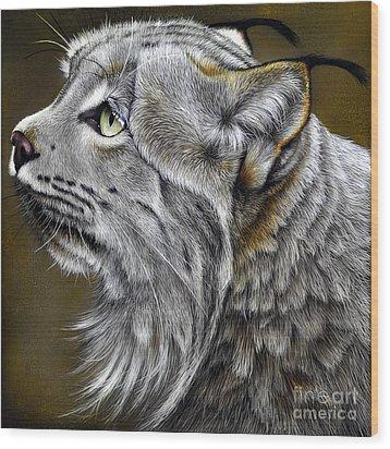 Canadian Lynx Wood Print by Jurek Zamoyski