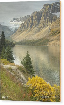 Wood Print featuring the photograph Canadian Scene by Wanda Krack