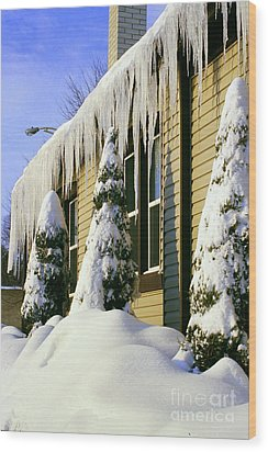 Canadian Winter Wood Print