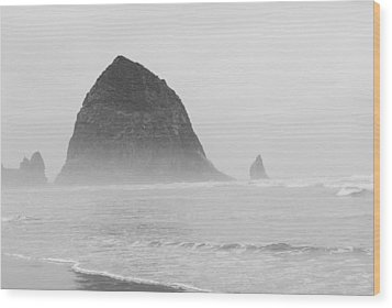 Canal Beach Oregon Black And White Wood Print