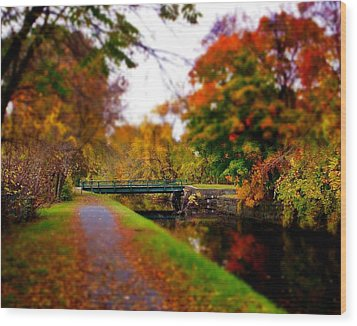 Canal Dream Wood Print by Rodney Lee Williams