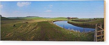 Canal Wood Print by Riley Handforth