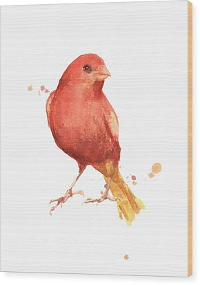 Canary Bird Wood Print by Alison Fennell