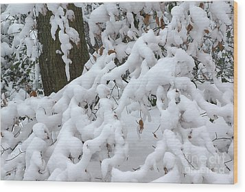 Candy Floss Snow Wood Print by David Birchall