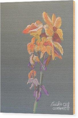 Canna Wood Print by Pamela  Meredith