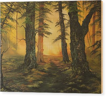 Cannock Chase Forest In Sunlight Wood Print by Jean Walker