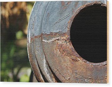 Cannon Barrel Fountain Of Youth Wood Print by Christine Till