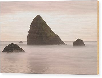 Cannon Beach - 1 Wood Print by Maxwell Amaro