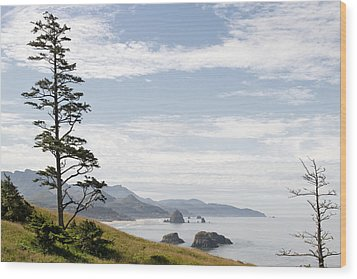 Cannon Beach At Ecola State Park Wood Print by David Gn