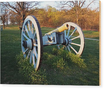 Cannon In The Grass Wood Print by Michael Porchik