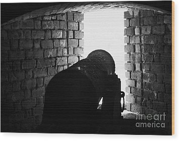 Cannon Pointing Out Of Wall Port In Fort Jefferson Dry Tortugas National Park Florida Keys Usa Wood Print by Joe Fox