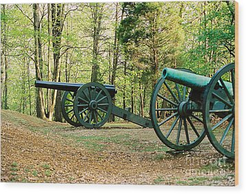 Cannons I Wood Print by Anita Lewis