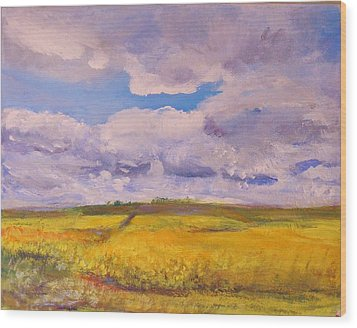 Canola And Clouds Wood Print by Helen Campbell