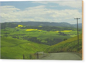 Canola Country Road Wood Print by Anne Mott