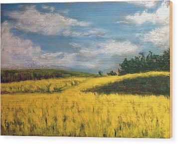 Canola Fields In Rimbey Alberta Wood Print by Fiona Graham