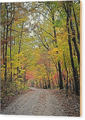 Canopy Of Yellow Wood Print by Marty Koch