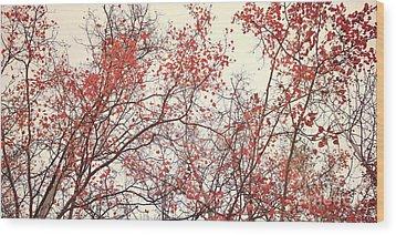 canopy trees II Wood Print by Priska Wettstein
