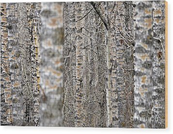 Can't See The Wood For The Trees Wood Print by Dee Cresswell