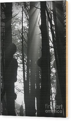 Can't See...the Forest For The Trees Wood Print