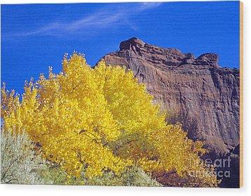 Canyon De Chelly Autumn    Wood Print by Douglas Taylor