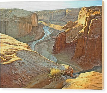 Canyon De Chelly Wood Print by Paul Krapf
