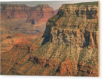 Canyon Grandeur 1 Wood Print