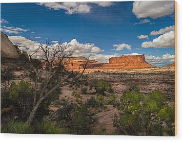 Canyon Lands Evening Wood Print by Michael J Bauer