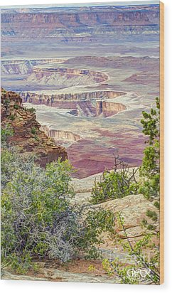 Wood Print featuring the photograph Canyon Lands by Wanda Krack