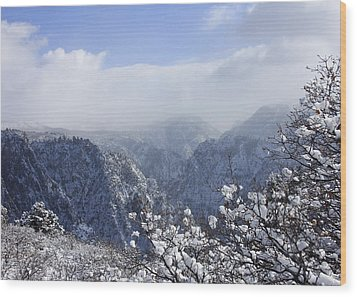 Canyon Mist Wood Print