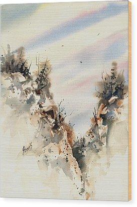 Canyon Wood Print by Sam Sidders
