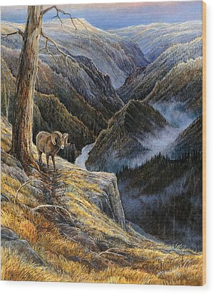 Canyon Solitude Wood Print by Steve Spencer
