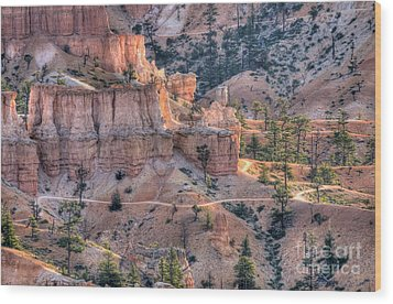 Wood Print featuring the photograph Canyon Trails by Wanda Krack