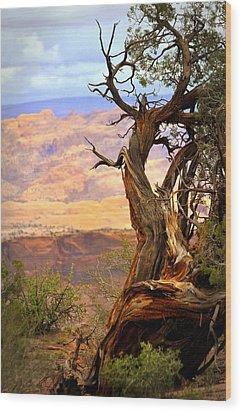 Canyon Vista 1 Wood Print by Marty Koch