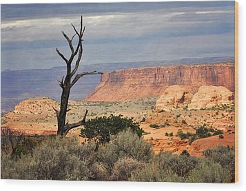 Canyon Vista 2 Wood Print by Marty Koch