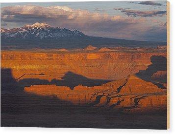 Canyonlands Light Wood Print by Joseph Rossbach