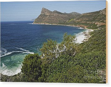 Cape And Cliffs Nearby Cape Point Wood Print by Sami Sarkis