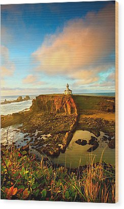 Cape Arrago Lighthouse1 Wood Print by Joe Klune