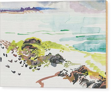 Cape Cod 2 Wood Print by Vannucci Fine Art