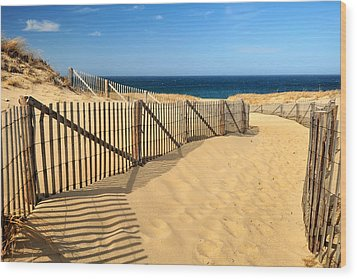 Wood Print featuring the photograph Cape Cod Beach by Mitchell R Grosky