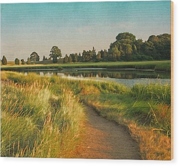 Cape Cod Eastham Eventide Number Two Wood Print