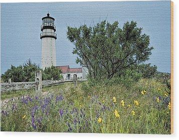 Cape Cod Lighthouse Wood Print by John Haldane