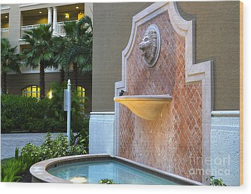 Wood Print featuring the photograph Cape Coral Florida Fountain by Timothy Lowry
