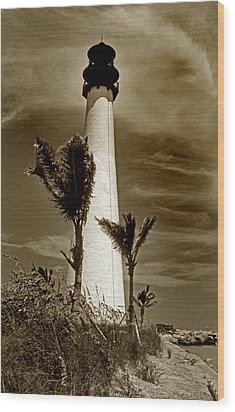 Cape Florida Lighthouse Wood Print by Skip Willits