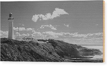Cape Green Light Momochrome Wood Print by David Rich