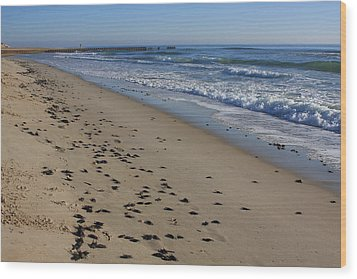 Cape Hatteras - Mermaid's Purse Laiden Beach Wood Print by Mountains to the Sea Photo